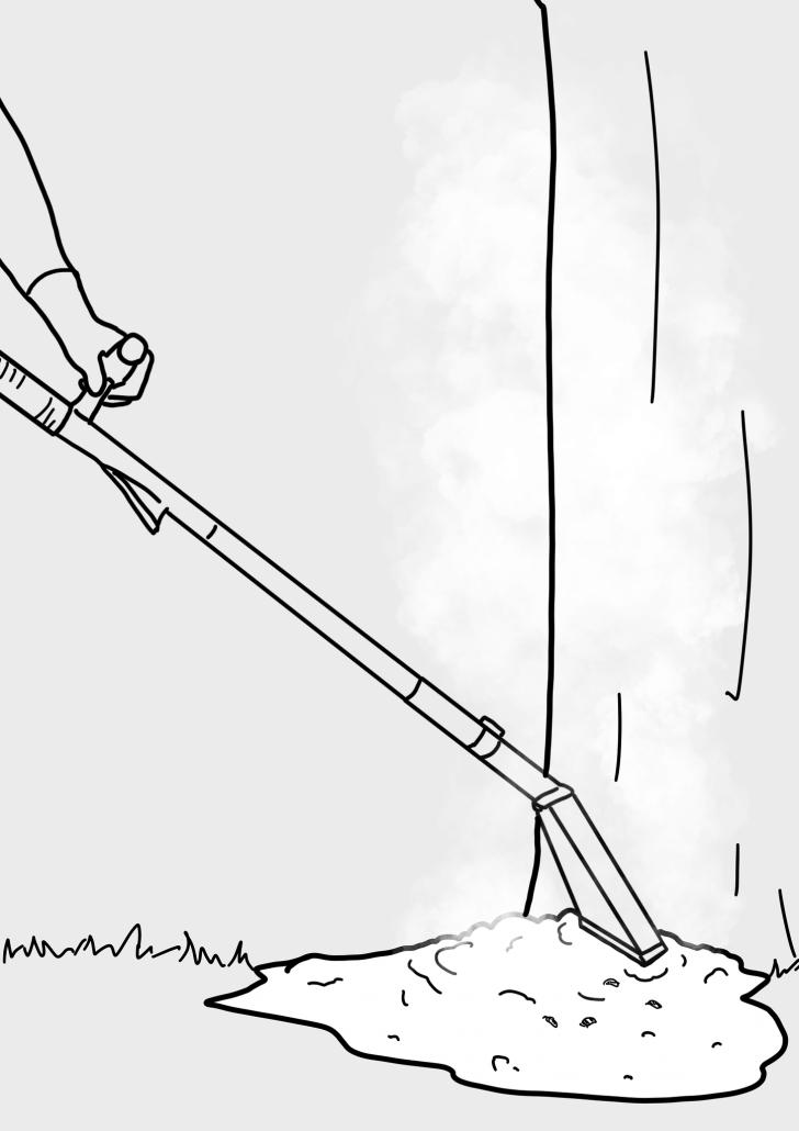 gründliche Vernichtung des Eichenprozessionsspinners, seiner Larven und Brennhaare